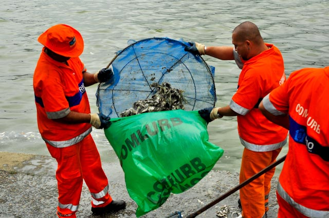 Los servicios de limpieza han retirado 70 toneladas de peces muertos